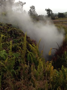 One of the Steam Vents